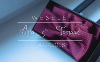 Anna i Tomasz – Wesele